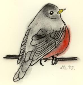 OCT robin