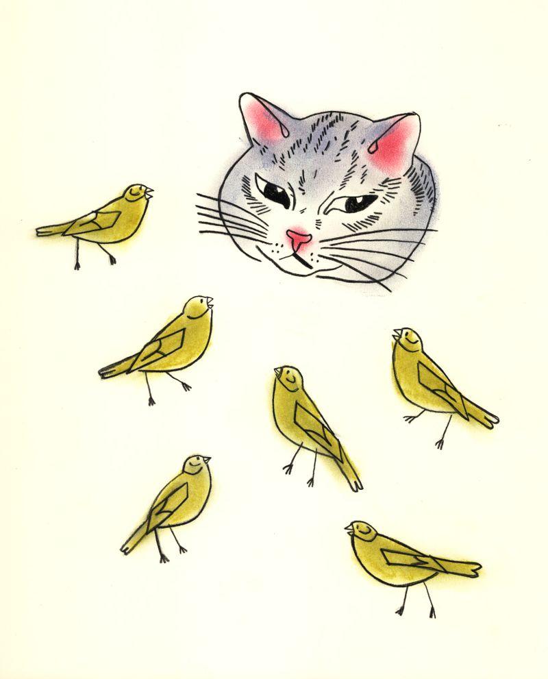 April cat + canaries 2