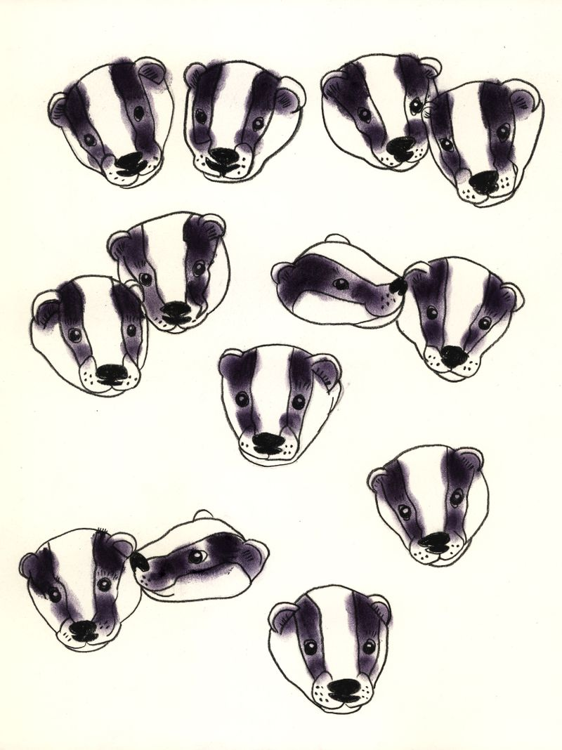April Badgers