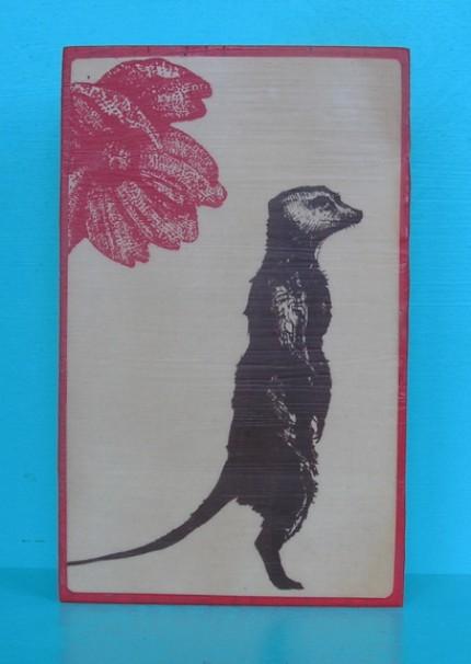 Tall meerkat and flower