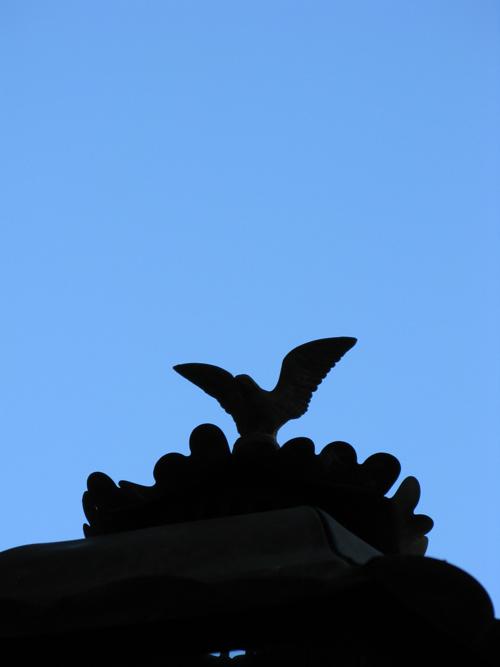 Shadow Shot Sunday ornament Macleay street