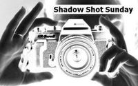 Shadow Shot Sunday logo1