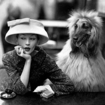Vogue 1955_Richard_Avedon_-_model_Dovima.125130531_large