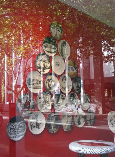 Macleay Street_Matou_en_Peluche