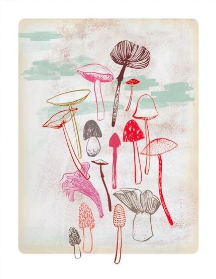 Ground-work-fungi