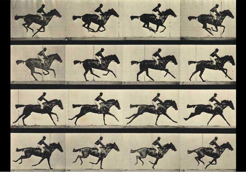 Eadweard-Muybridge-stop-motion