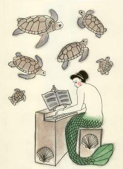 Turtle Trocadero_Matou_en_Peluche