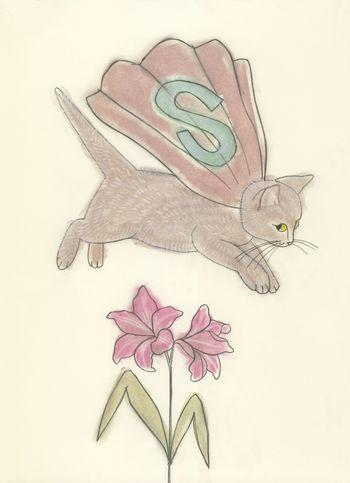Super KittenMatou en Peluche