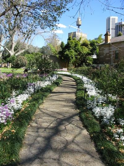 Spring_Path_Matou_en_Peluche