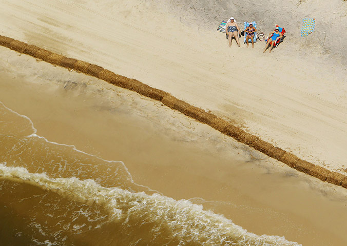 Guardian Sunbathers-Gulf of Mexico