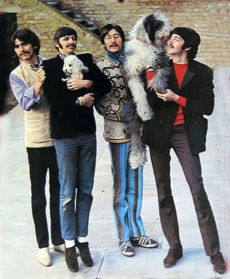 Beatles Dogs