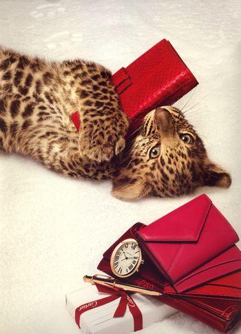 Cartier Leopard 1