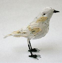 Abigail_brown_whitebird