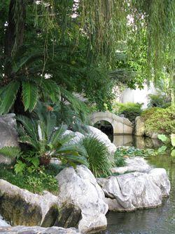 Chinese_Garden_Matou_Peluche_3
