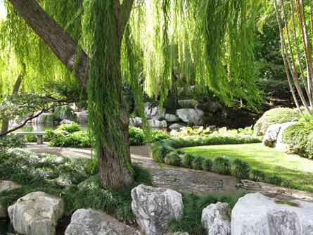 Chinese_Gardens_Matou_en_Peluche_13
