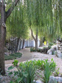 Chinese_Gardens_Matou_en_Peluche_7