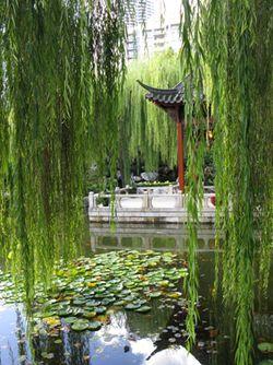 Chinese_Gardens_Matou_en_Peluche_10