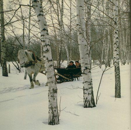 Tolstoy-3 Matou en Peluche