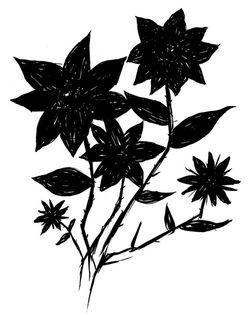 Ashleyg-flowers