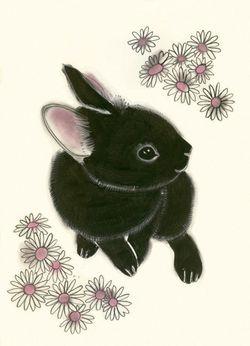 Black Bunny Matou en Peluche
