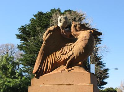 Fitzroy gardens Matou en Peluche