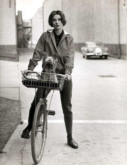 Bike_Audrey_Hepburn