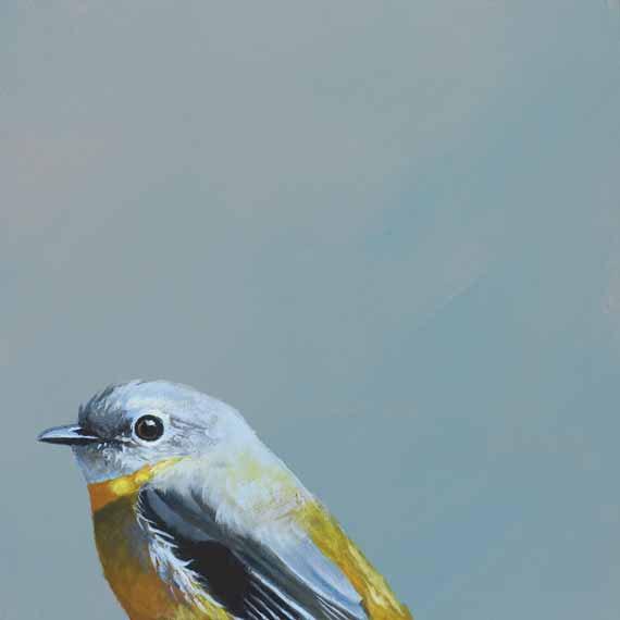 MincingMockingbird_5