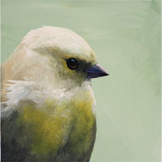 MincingMockingbird_7