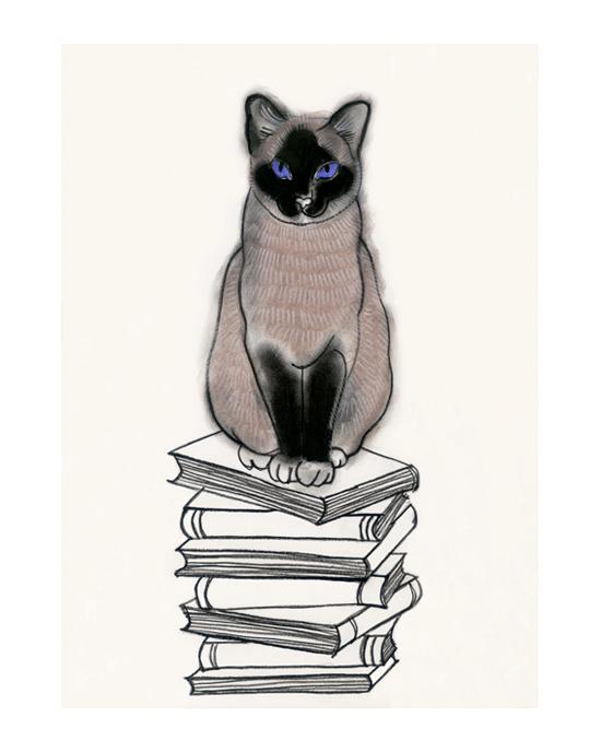 I heart books - Matou en Peluche