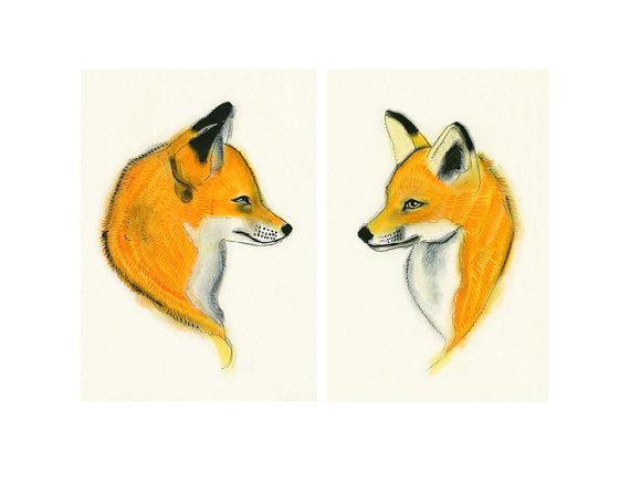 Foxes_Matou_en_Peluche