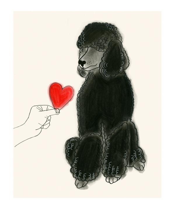 Matou_en_Peluche_Nathan_Valentine_Poodle_Two
