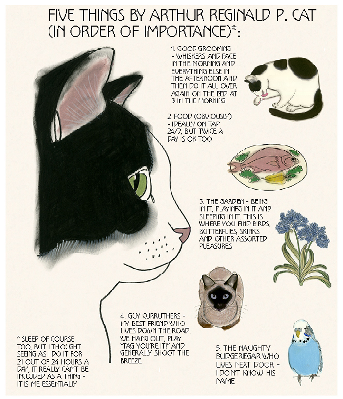Matou_en_Peluche_Arthur Reginald P.Cat