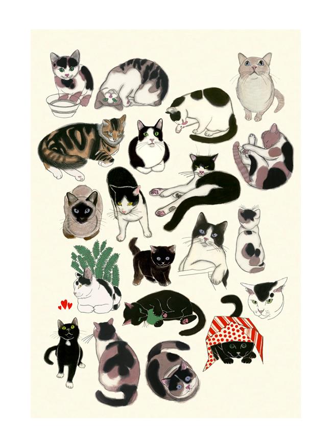 Matou_en_Peluche_Twenty Cats