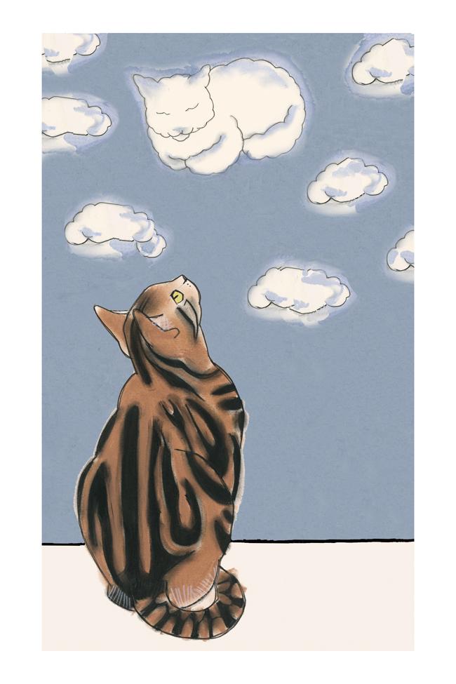 Matou_en_Peluche_Cloud cat