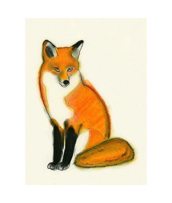 Fox_Matou_en_Peluche