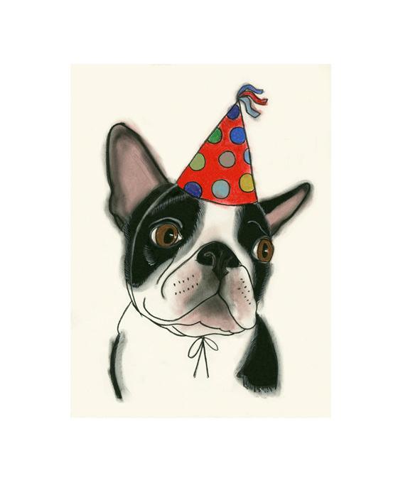 Matou_en_Peluche_Benny_the_Boston_Terrier