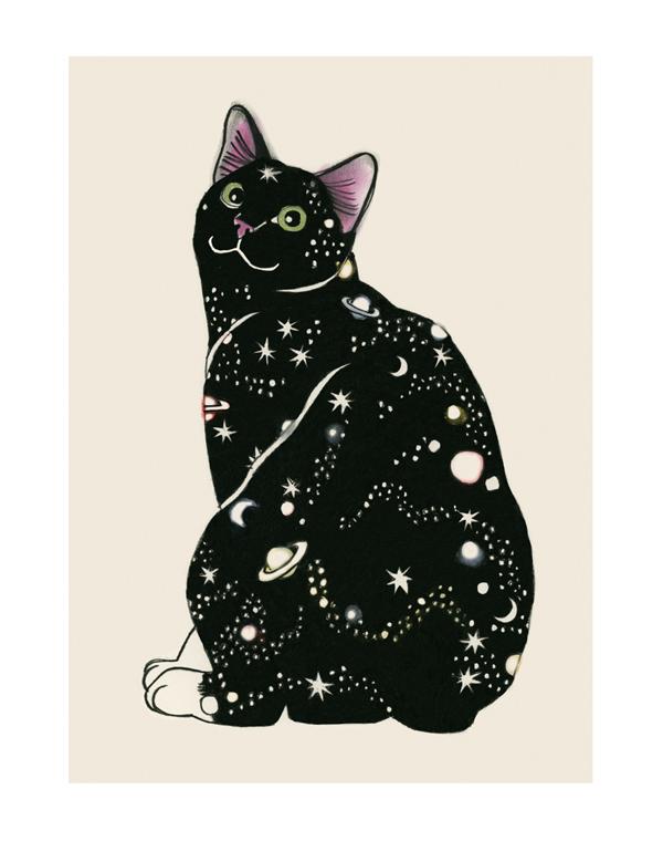 Matou_en_Peluche_Galaxy Cat