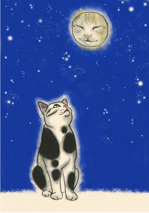 Matou en Peluche The cat in the moon
