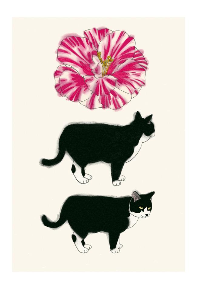 Matou_en_Peluche_Camellia and cat