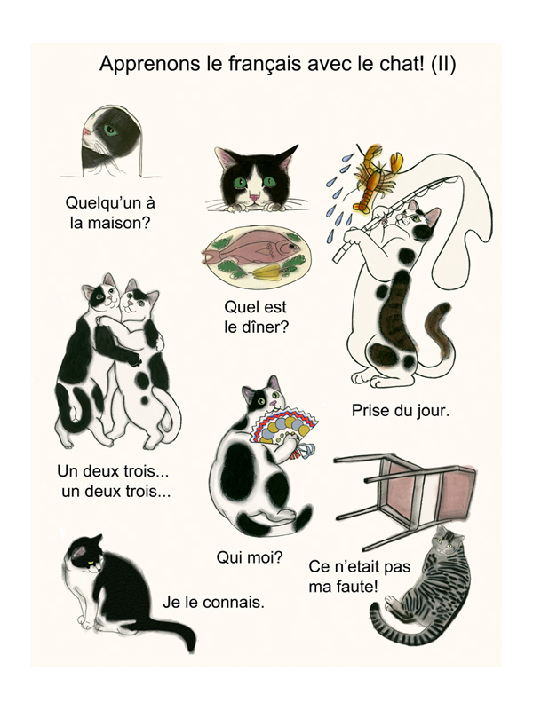 Matou en Peluche_Let's learn French two