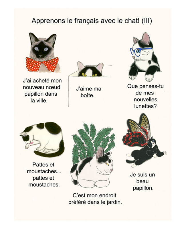 Matou_en_Peluche_Let's learn French (3)