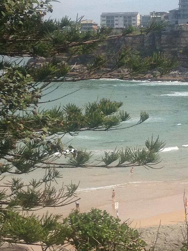 _Freshwater_Beach_Matou_en_Peluche