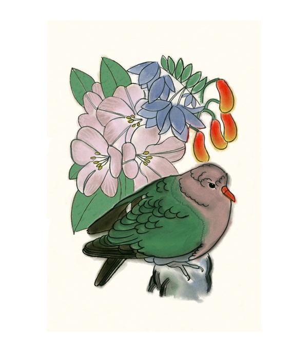Matou_en_Peluche_Emerald_Dove