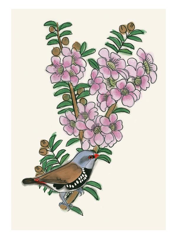 Matou_en_Peluche_Finch_Blossom