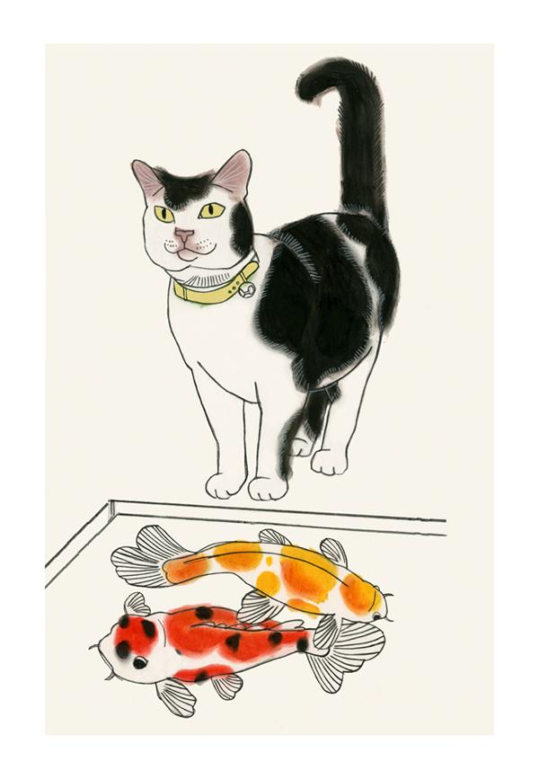 Matou_en_Peluche_Pussy Cat Koi_fini